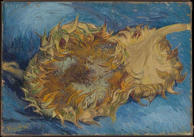 800px-Sunflowers_MET_DP229743.jpg
